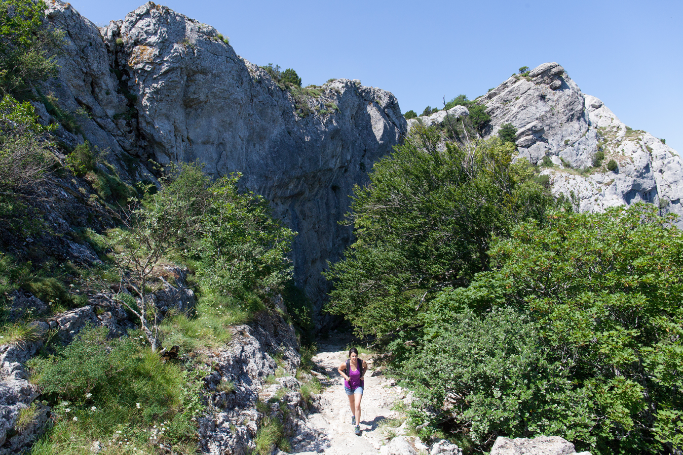 Provence Verte & Verdon Tourisme